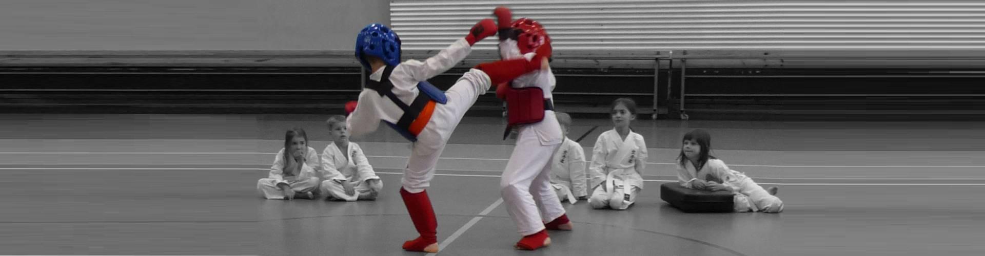 Ochraniacze Do Karate