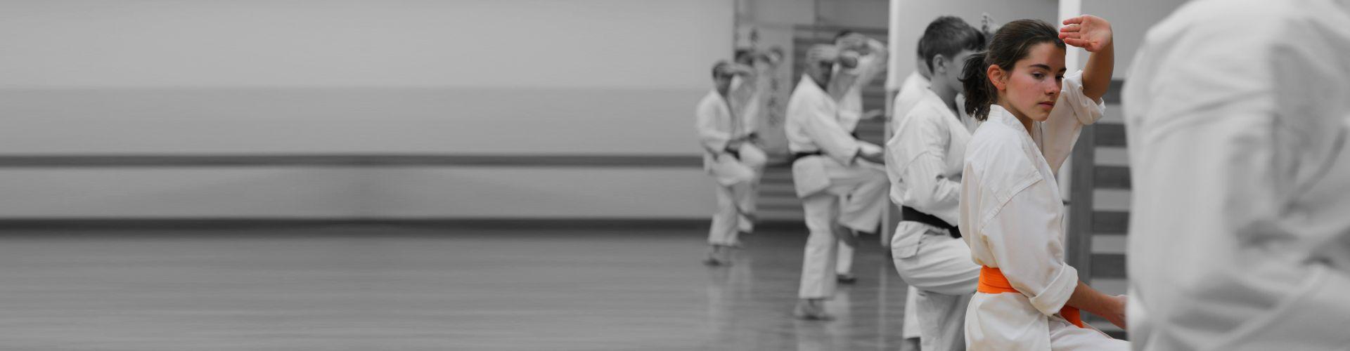 Karate dla dzieci początkujących Warszawa Mokotów Ursynów Shito-Ryu Karate-Do Genbu-Kai Poland Kobudo Battodo