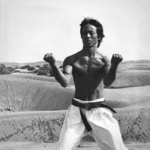 karate-blog-hidetoshi-nakahashi